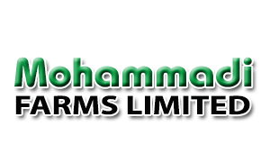 Mohammadi Farms Ltd.